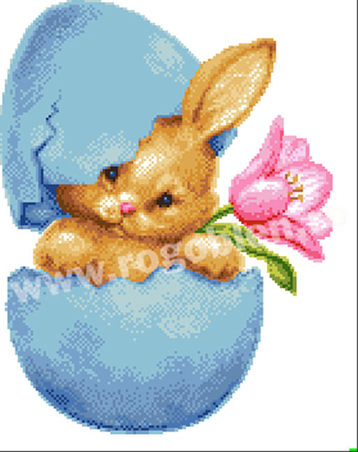 Sorpresa di coniglio