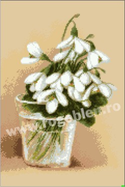 Snowdrops in a Glass
