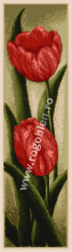 Duo - Tulipes rouges