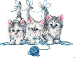 Tricksy Cats