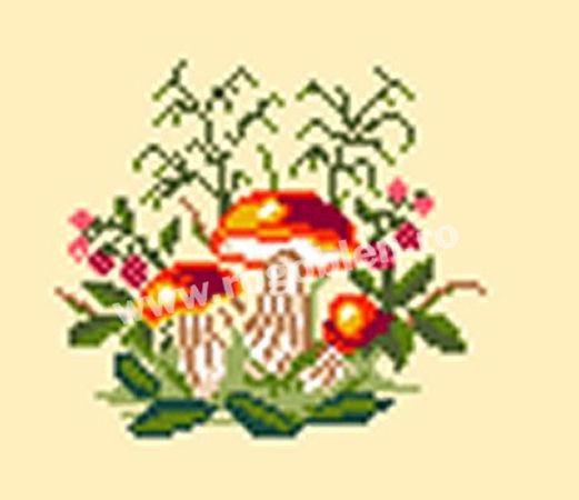 Funghi 2