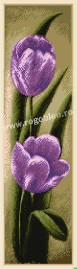 Duetto -  Tulipani viola