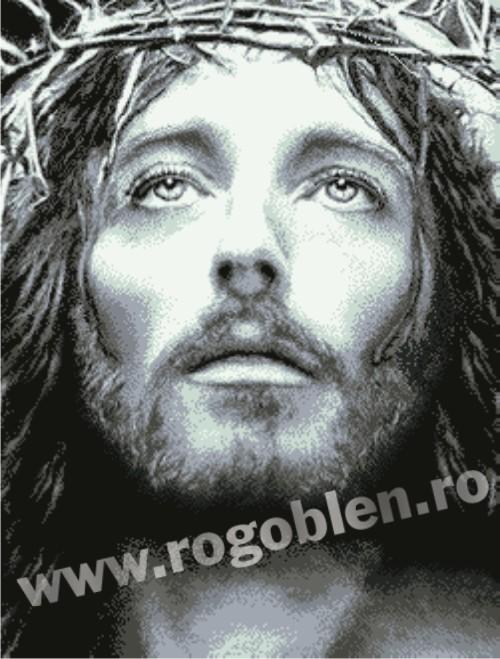Sacrifice de Jésus-Christ