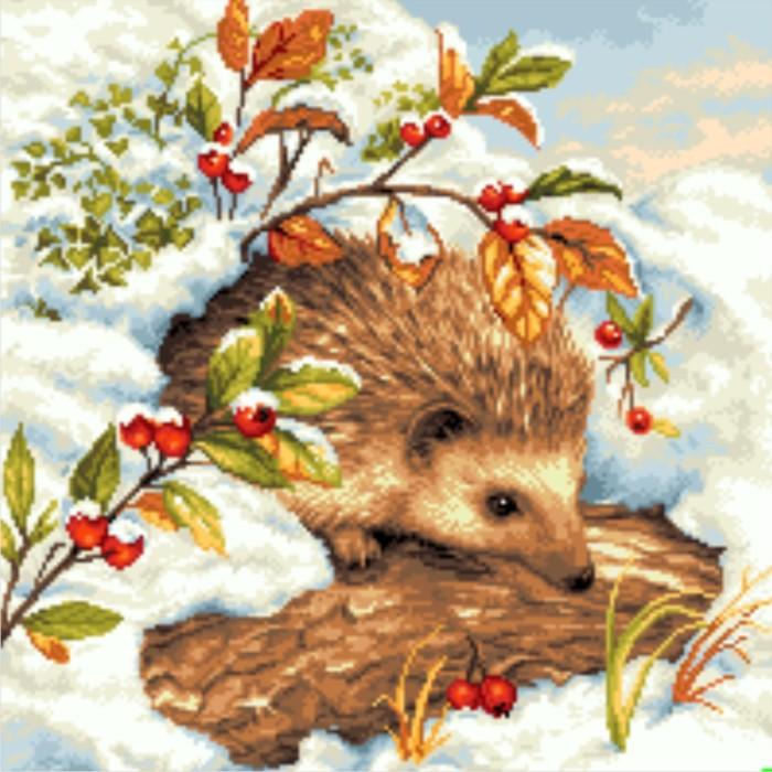 Hedgehog Under Snow