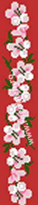 Sirag roz
