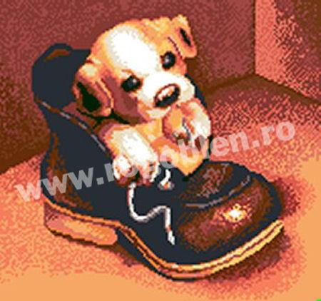 Dorina's dog