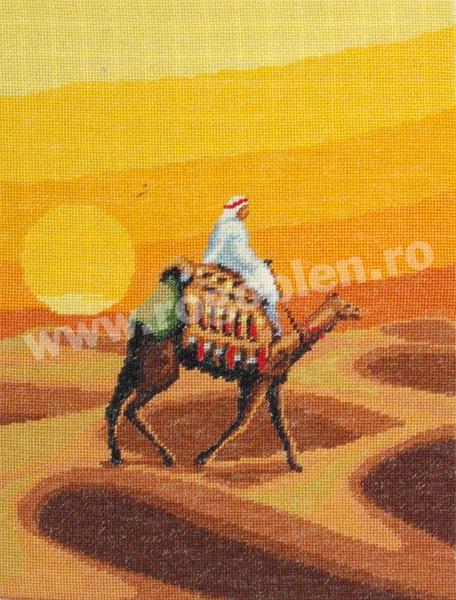 Desertul arabului