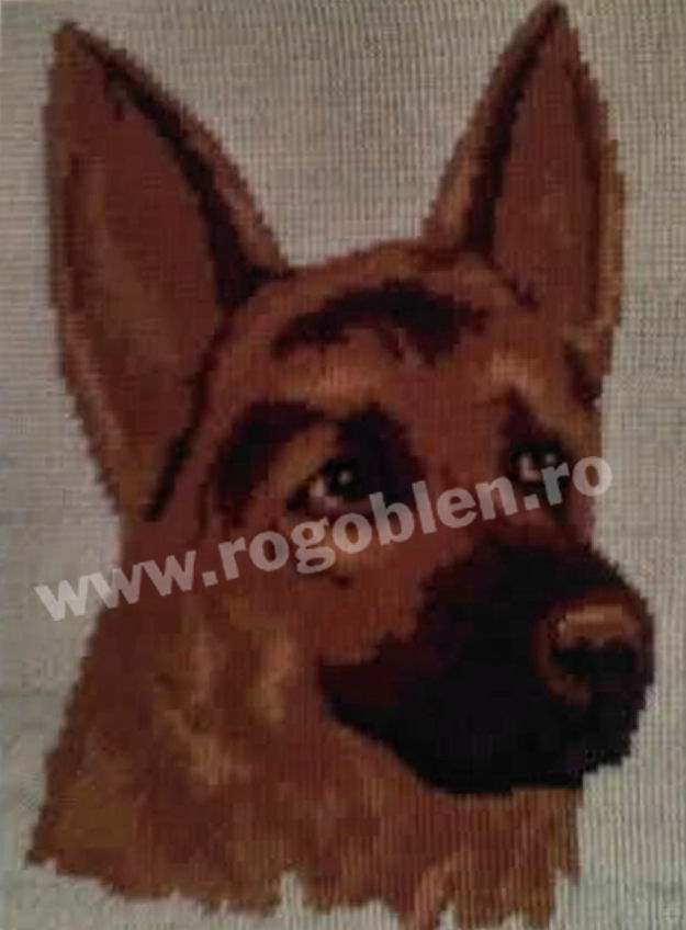 Donna, the German Shepherd