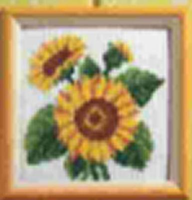 Flori de soare