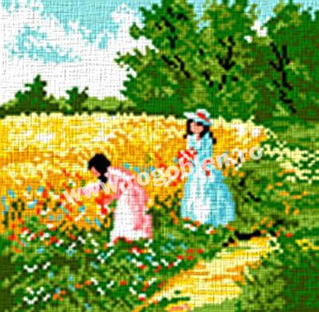 Fetite in lan
