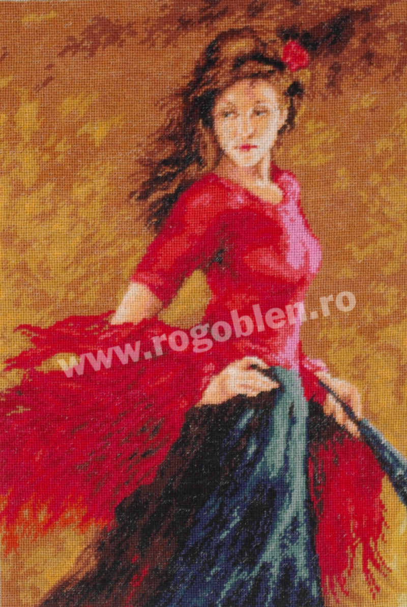 Pasi de flamenco