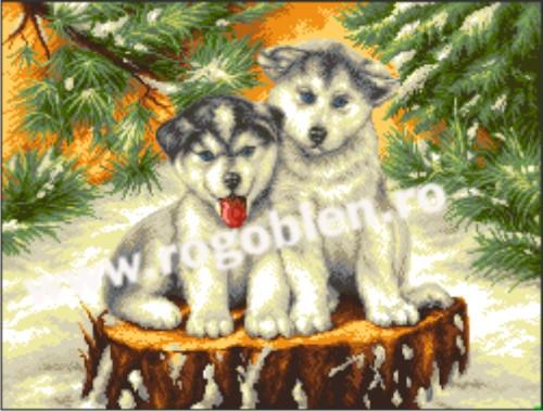 Snows' Dogs