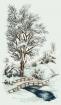 Goblen - Carari ninse