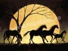 Goblen - Nocturna cailor