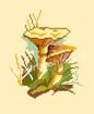 Goblen - Champignons 9