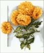 Goblen - Figlie d'autunno