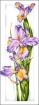 Goblen - Iris di ametista