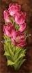 Goblen - Lalele roz