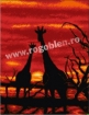 Goblen - Giraffes at dusk