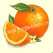 Goblen - Portocale
