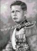 Goblen - Regele Mihai (gri)