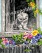Goblen - Pisoiul curios