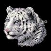 Goblen - Tigru alb