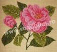 Goblen - Camellia