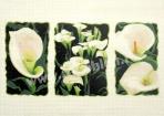 Goblen - Calla Triptych
