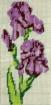 Goblen - Iris lilas