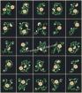 Goblen - Floral Alphabet