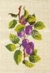 Goblen - Prunes