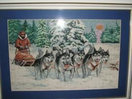 Goblen - Expeditie in Alaska